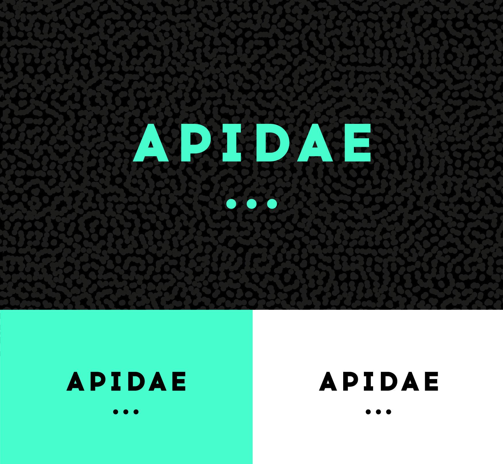 creation-logo-apidae